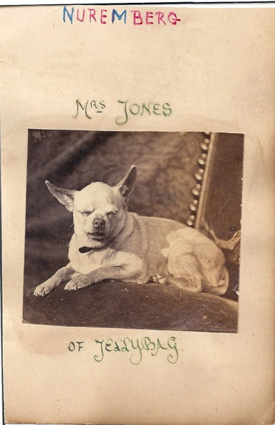 Mrs. Jones of Jellybag? c. 1900